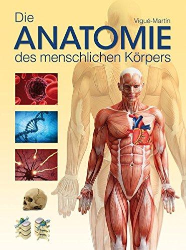 Die Anatomie des menschlichen Körpers | Ratgeber | Lesershop